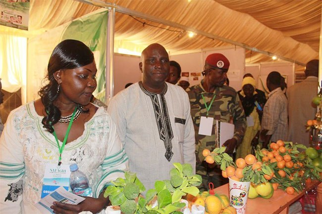SAFAGRI : «  L'Afrique a le potentiel d'accroître la valeur de son rendement agricole annuel de 280 milliards de dollars en 2010 à 500 milliards de dollars d'ici à 2020», dixit Salifou  OUEDRAOGO